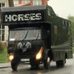 horsesmjo080