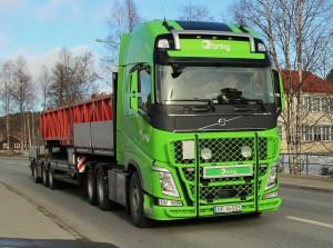 norsk46503bring