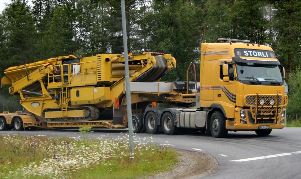 norsk66392storli