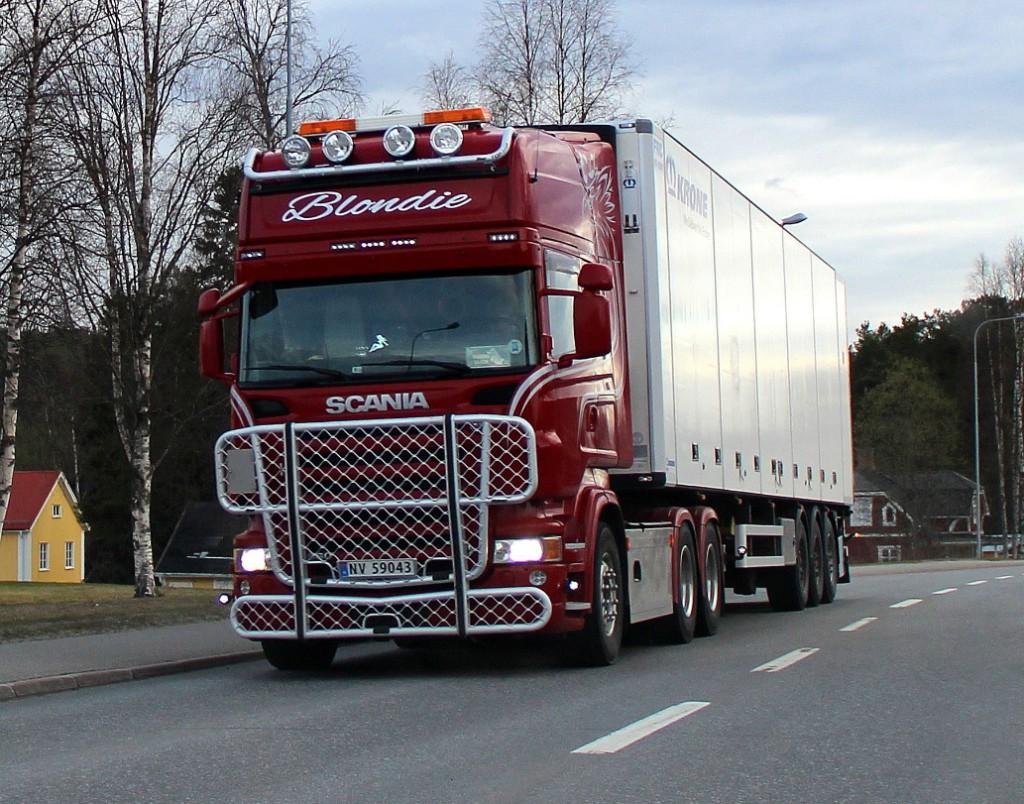 norsk59043blondie
