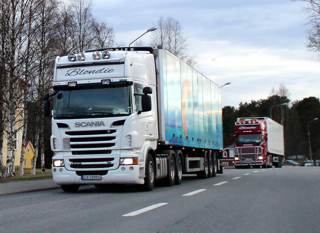 norsk59095blondie