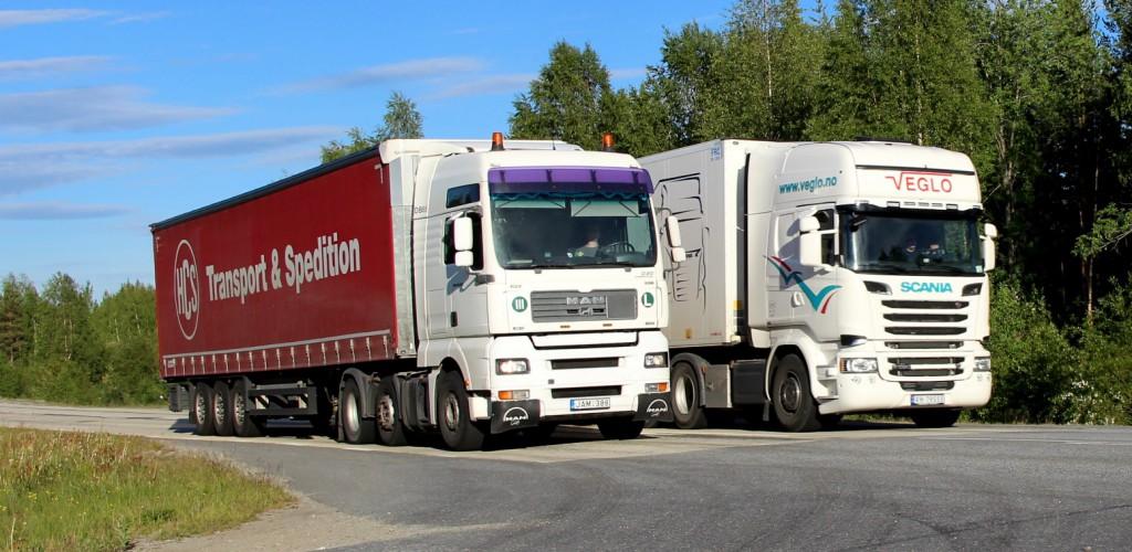 norsk79553vegloltjam388
