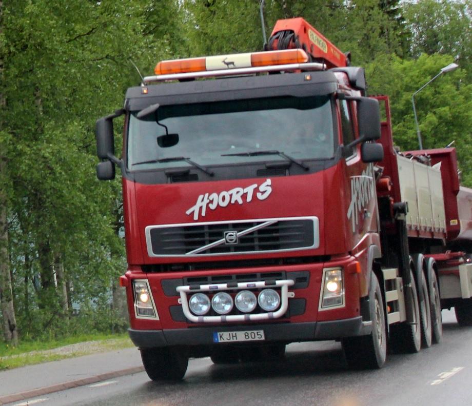 hjortskjh805