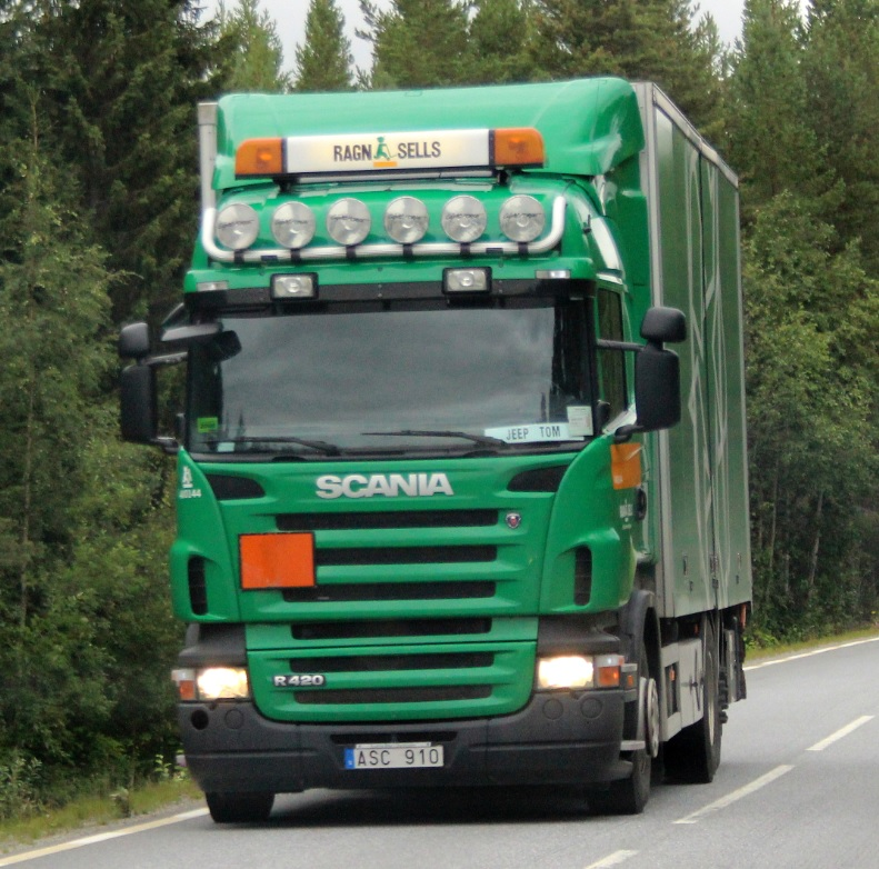 ragnsellsasc91013