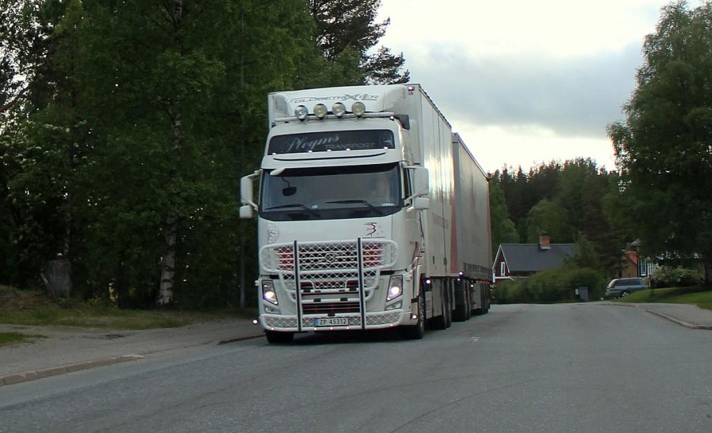 norsk45312pleyms
