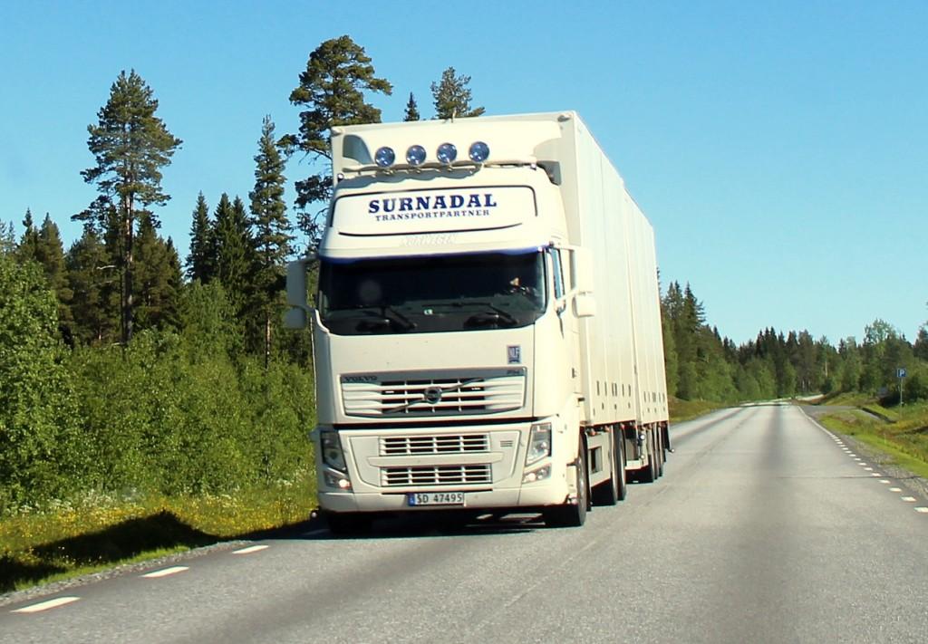norsk47495surnadal