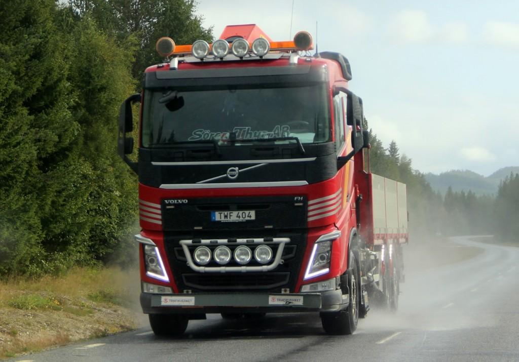 sörenthyrtwf404