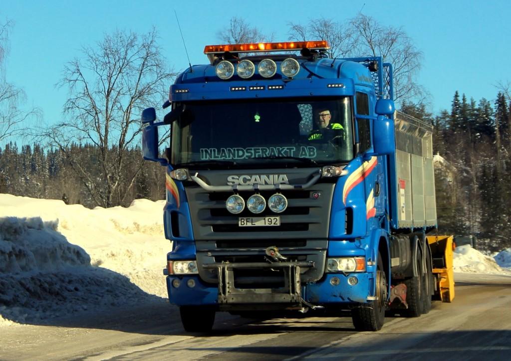 blåbfl19218