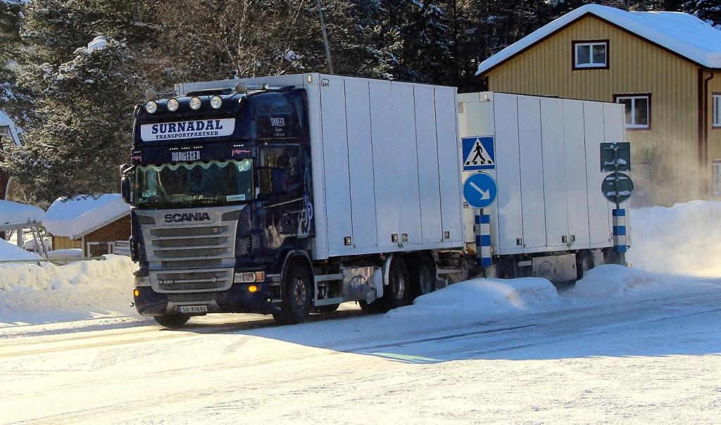 norsk81890surnadal