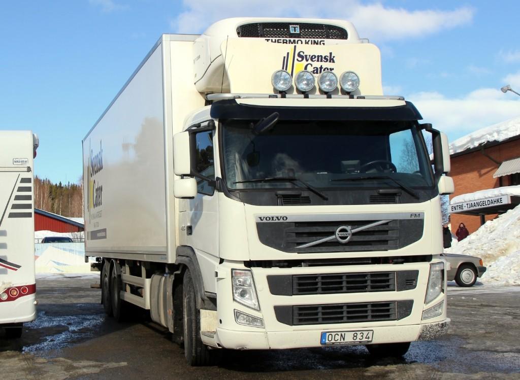 svenskcaterocn834