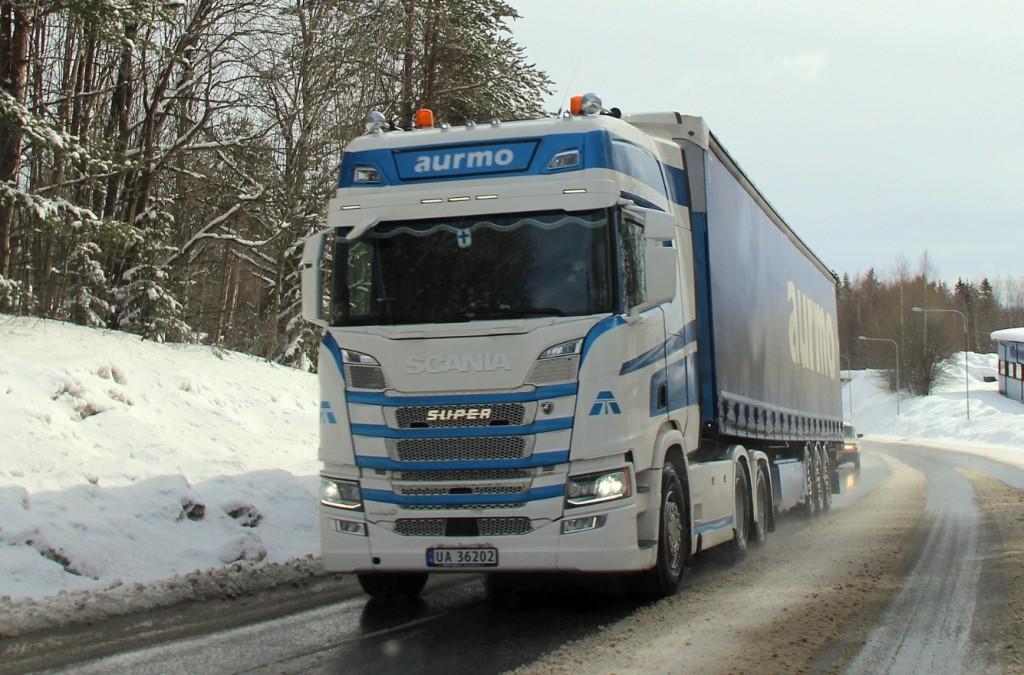 norsk36202aurmo