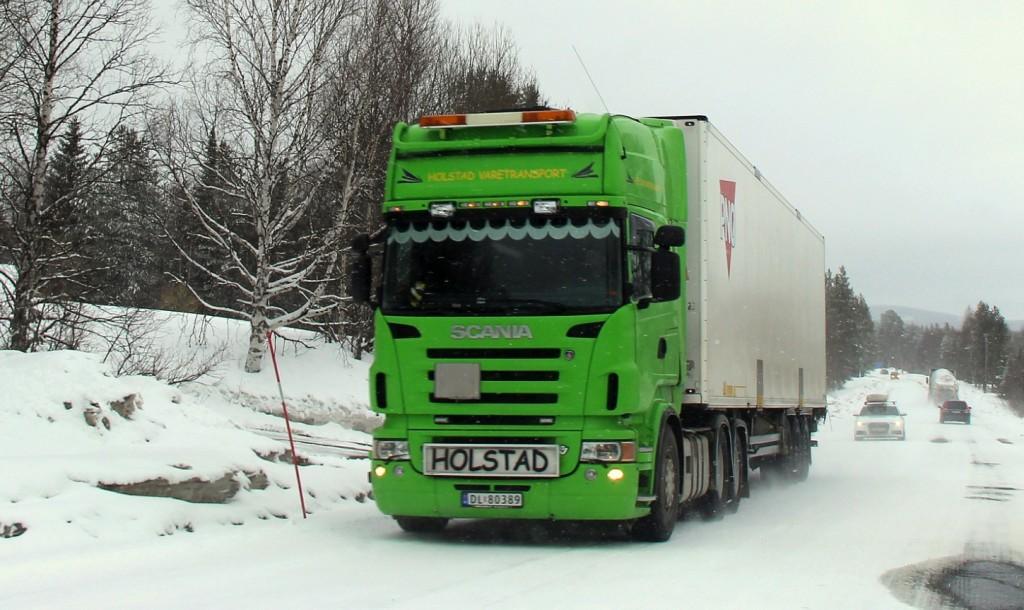 norsk80389holstad