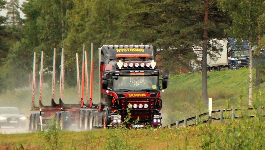 nyströmblo774